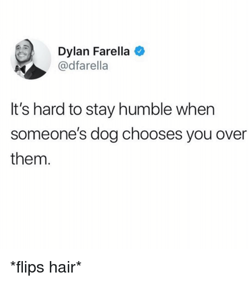Flips: Dylan Farella  @dfarella  It's hard to stay humble when  someone's dog chooses you over  them *flips hair*