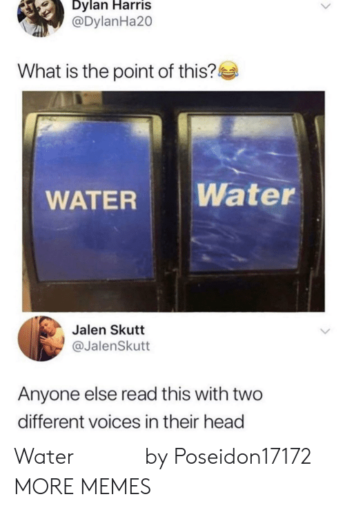 Dank, Head, and Memes: Dylan Harris  @DylanHa20  What is the point of this?  Water  WATER  Jalen Skutt  @JalenSkutt  Anyone else read this with two  different voices in their head Water 𝒲𝒶𝓉𝑒𝓇 by Poseidon17172 MORE MEMES