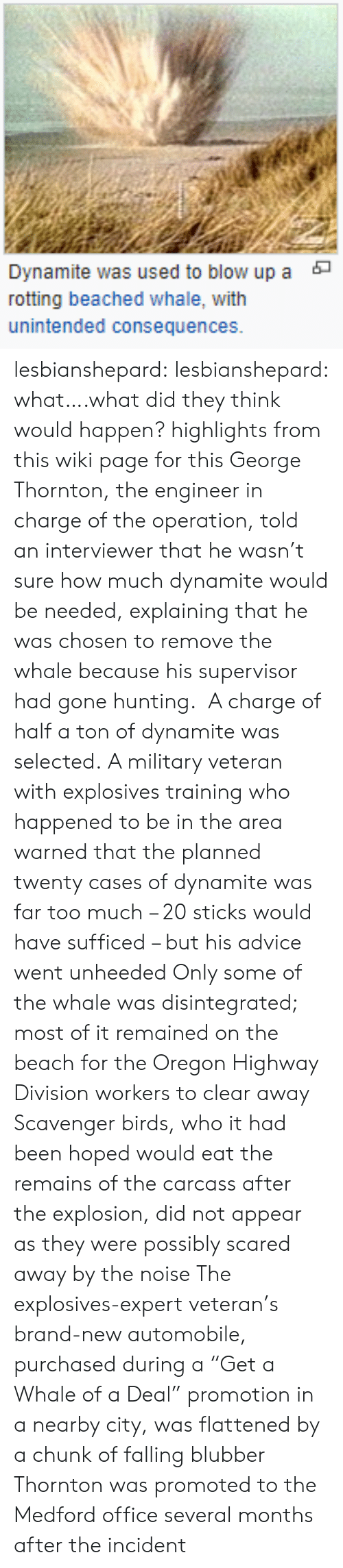 """dynamite: Dynamite was used to blow up a  rotting beached whale, with  unintended consequences. lesbianshepard:  lesbianshepard: what….what did they think would happen? highlights from this wiki page for thisGeorge Thornton, the engineer in charge of the operation, told an interviewer that he wasn't sure how much dynamite would be needed, explaining that he was chosen to remove the whale because his supervisor had gone hunting.   A charge of half a ton of dynamite was selected.     A military veteran with explosives training who happened to be in the area warned that the planned twenty cases of dynamite was far too much – 20 sticks would have sufficed – but his advice went unheeded     Only some of the whale was disintegrated; most of it remained on the beach for the Oregon Highway Division workers to clear away  Scavenger birds, who it had been hoped would eat the remains of the carcass after the explosion, did not appear as they were possibly scared away by the noise    The explosives-expert veteran's brand-new automobile, purchased during a """"Get a Whale of a Deal"""" promotion in a nearby city, was flattened by a chunk of falling blubber  Thornton was promoted to the Medford office several months after the incident"""
