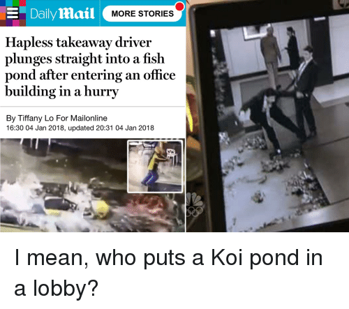 The Office, Fish, and Mailonline: E DailyMail  MORE STORIES  Hapless takeaway driver  plunges straight into a fish  pond after entering an office  building in a hurry  By Tiffany Lo For Mailonline  16:30 04 Jan 2018, updated 20:31 04 Jan 2018