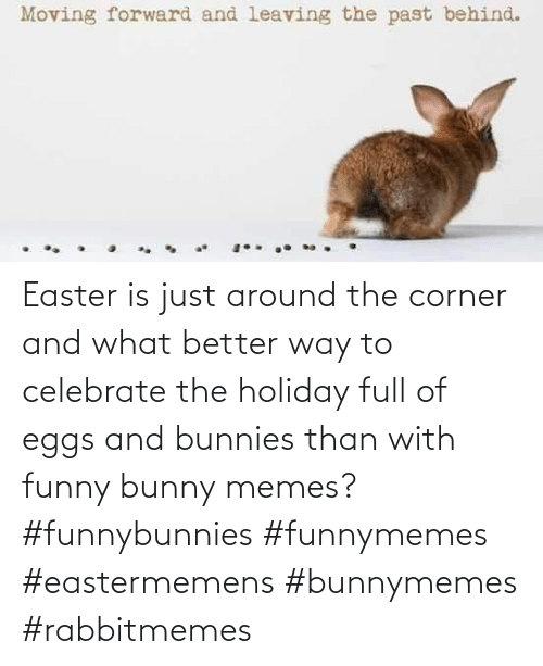 bunny: Easter is just around the corner and what better way to celebrate the holiday full of eggs and bunnies than with funny bunny memes? #funnybunnies #funnymemes #eastermemens #bunnymemes #rabbitmemes