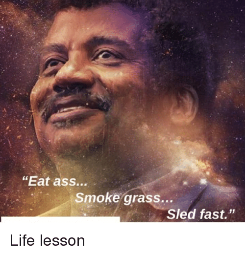 "Ass, Life, and Memes: ""Eat ass...  Smoke grass...  Sled fast."" Life lesson"