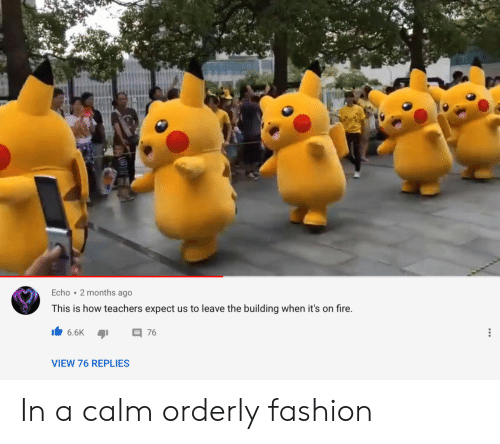 Fashion: Echo 2 months ago  This is how teachers expect us to leave the building when it's on fire.  6.6K  76  VIEW 76 REPLIES In a calm orderly fashion
