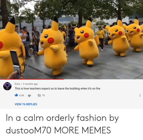 Fashion: Echo 2 months ago  This is how teachers expect us to leave the building when it's on fire.  6.6K  76  VIEW 76 REPLIES In a calm orderly fashion by dustooM70 MORE MEMES