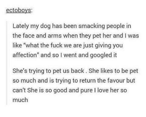 "Googłe: ectoboys:  Lately my dog has been smacking people in  the face and arms when they pet her and l was  like ""what the fuck we are just giving you  affection"" and so l went and googled it  She's trying to pet us back. She likes to be pet  so much and is trying to return the favour but  can't She is so good and pure l love her so  much"