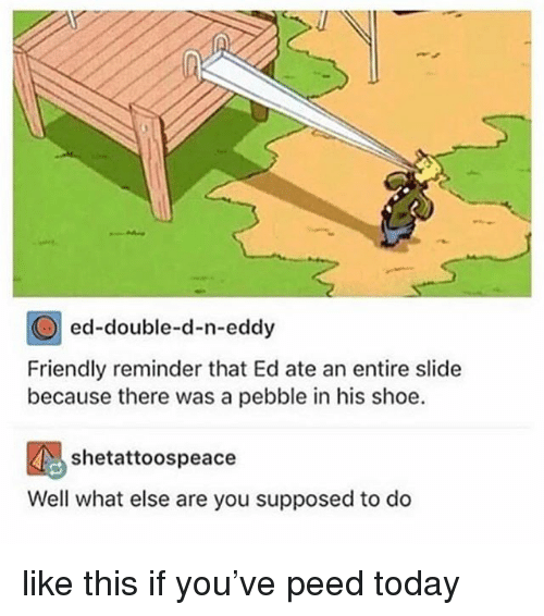 Today, Girl Memes, and Shoe: ed-double-d-n-eddy  Friendly reminder that Ed ate an entire slide  because there was a pebble in his shoe.  Well what else are you supposed to do like this if you've peed today
