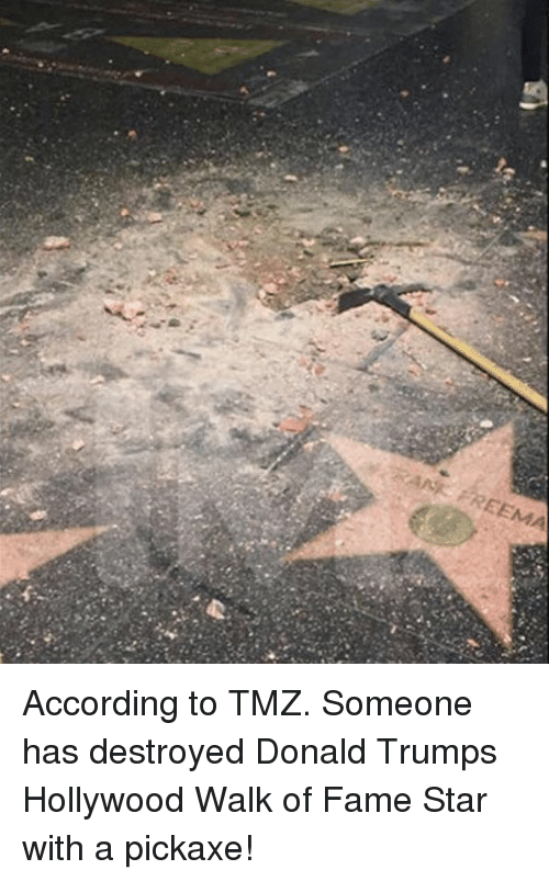 Star, Hood, and According: EEMA According to TMZ.  Someone has destroyed Donald Trumps Hollywood Walk of Fame Star with a pickaxe!