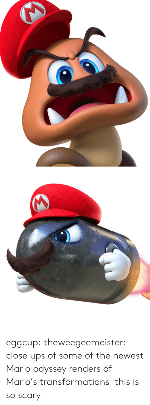 Tumblr, Ups, and Mario: eggcup:  theweegeemeister: close ups of some of the newest Mario odyssey renders of Mario's transformations this is so scary