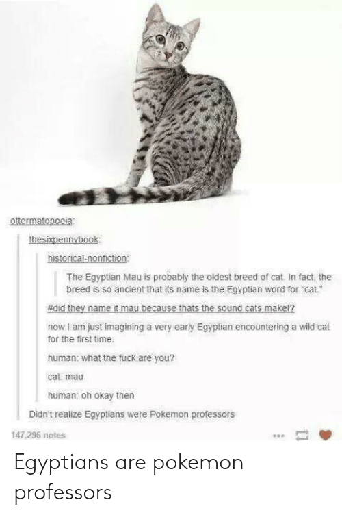 Pokemon: Egyptians are pokemon professors