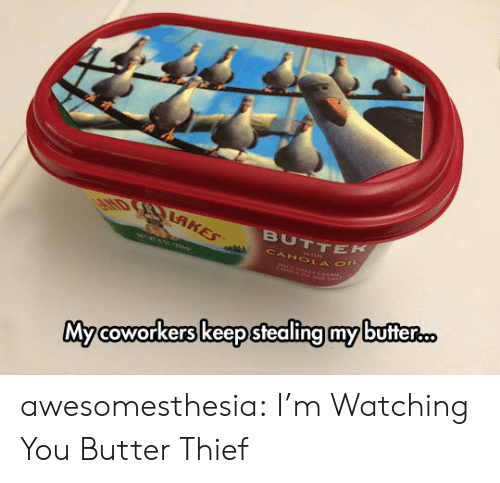 thief: EHD RAKES  BUTTEK  CANOLA O  Mycoworkers keep stealing my butter... awesomesthesia:  I'm Watching You Butter Thief