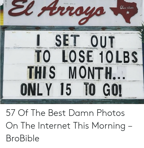 Summer Memes 2018: El Array  I SET OUT  TO LOSE 1OLBS  THIS MONTH.  ONLY 15 TO GO 57 Of The Best Damn Photos On The Internet This Morning – BroBible