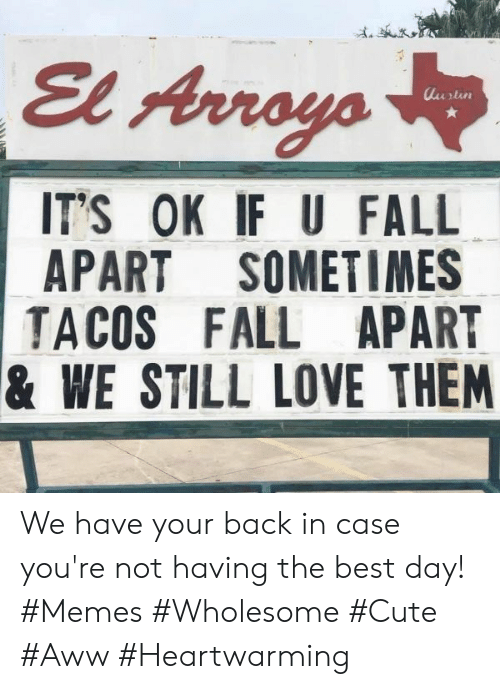 Memes Wholesome: El Arroys  lurtin  IT'S OK IF U FALL  APART SOMETIMES  TACOS FALL APART  & WE STILL LOVE THEM We have your back in case you're not having the best day! #Memes #Wholesome #Cute #Aww #Heartwarming