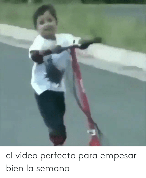 Video, Para, and Perfecto: el video perfecto para empesar bien la semana