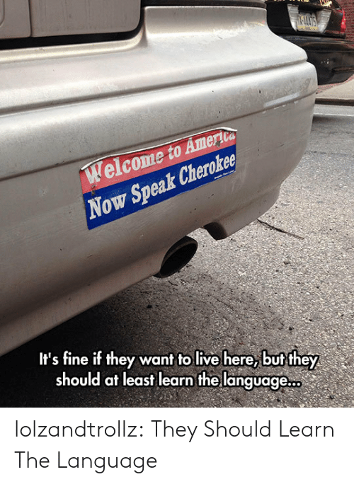 Tumblr, Blog, and Live: elcome to Amerioa  Now Speak Cheroker  It's fine if they want to live here, but they  should at least learn the language... lolzandtrollz:  They Should Learn The Language