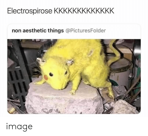 Aesthetic, Image, and  Things: Electrospirose KKKKKKKKKKKKK  non aesthetic things @PicturesFolder image