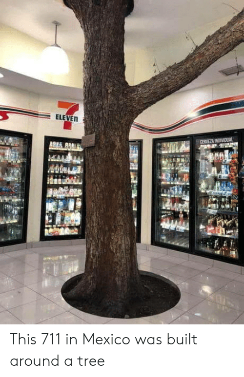 Mexico, Tree, and Eleven: ELEVEN  CERVEZA INDIVIDUAL This 711 in Mexico was built around a tree