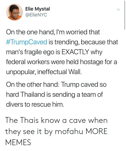 on the other hand: Elie Mystal  @ElieNYOC  On the one hand, l'm worried that  #TrumpCaved is trending, because that  man's fragile ego is EXACTLY why  federal workers were held hostage for a  unpopular, ineffectual Wall.  On the other hand: Trump caved so  hard Thailand is sending a team of  divers to rescue him The Thais know a cave when they see it by mofahu MORE MEMES