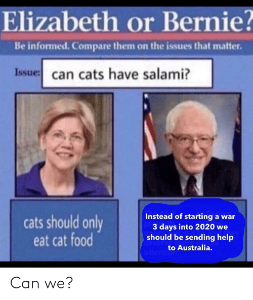 3 Days: Elizabeth or Bernie?  Be informed. Compare them on the issues that matter.  Issue: can cats have salami?  Instead of starting a war  3 days into 2020 we  should be sending help  cats should only  eat cat food  deserv  to Australia.  attention Can we?