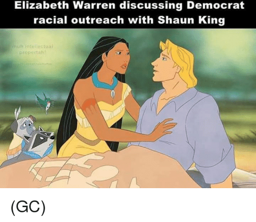 Elizabeth Warren, Memes, and Shaun King: Elizabeth Warren discussing Democrat  racial outreach with Shaun King  muh intell  propectah (GC)