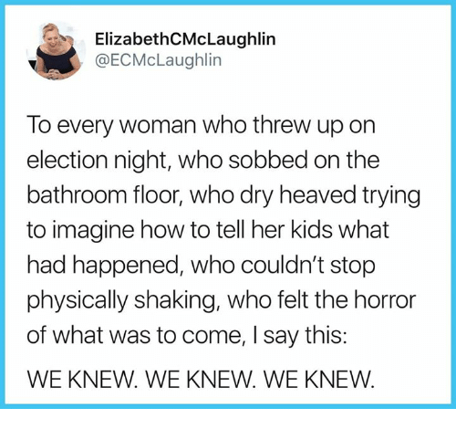 Memes, How To, and Kids: ElizabethCMcLaughlin  @ECMcLaughlin  To every woman who threw up on  election night, who sobbed on the  bathroom floor, who dry heaved trying  to imagine how to tell her kids what  had happened, who couldn't stop  physically shaking, who felt the horror  of what was to come, I say this:  WE KNEW. WE KNEW. WE KNEW.