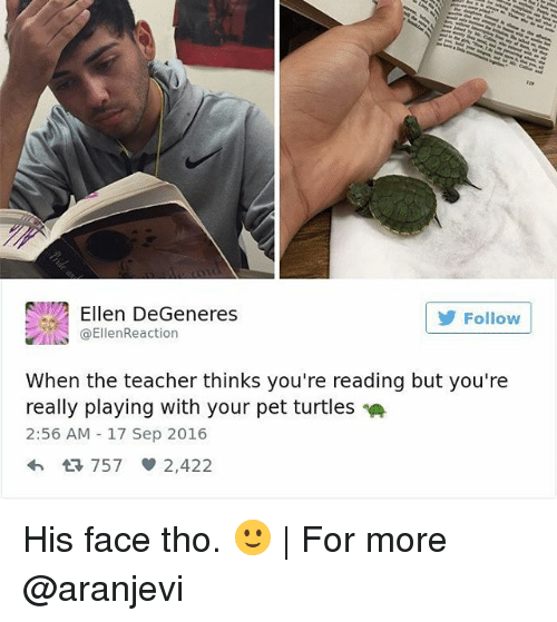Ellen Degenerates: Ellen DeGeneres  Follow  ta EllenReaction  When the teacher thinks you're reading but you're  really playing with your pet turtles  2:56 AM 17 Sep 2016  4h 757 2,422 His face tho. 🙂 | For more @aranjevi