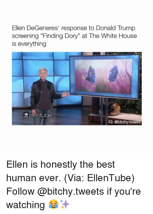"Ellen Degenerates: Ellen DeGeneres' response to Donald Trump  screening ""Finding Dory"" at The White House  is everything  tube  IG: @bitchy tweets Ellen is honestly the best human ever. (Via: EllenTube) Follow @bitchy.tweets if you're watching 😂✨"