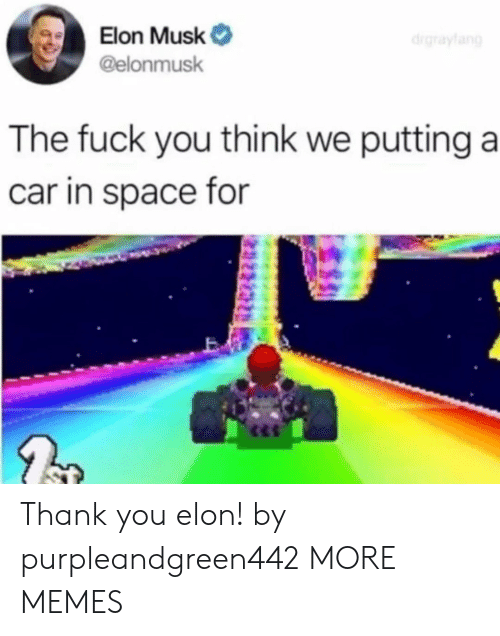 Dank, Fuck You, and Memes: Elon Musk  @elonmusk  The fuck you think we putting a  car in space for Thank you elon! by purpleandgreen442 MORE MEMES