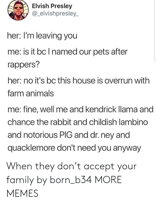 notorious: Elvish Presley  @_elvishpresley  her: I'm leaving you  me: is it bc l named our pets after  rappers?  her: no it's bc this house is overrun with  farm animals  me: fine, well me  chance the rabbit and childish lambino  and notorious PIG and dr. ney and  quacklemore don't need you anyway  and kendrick lama and When they don't accept your family by born_b34 MORE MEMES