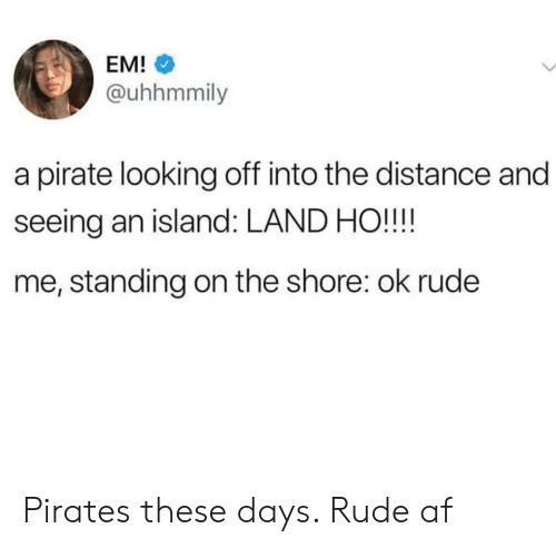 Af, Rude, and Pirates: EM!  @uhhmmily  a pirate looking off into the distance and  seeing an island: LAND HO!!!!  me, standing on the shore: ok rude Pirates these days. Rude af