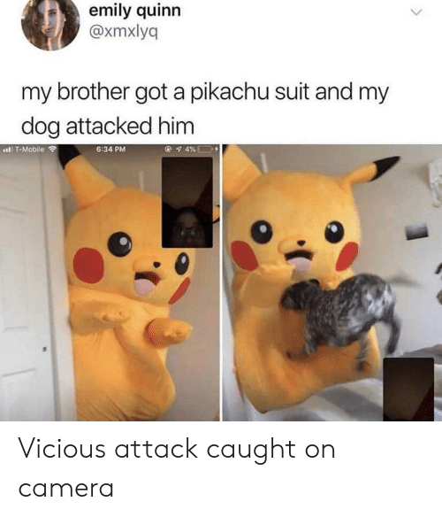 quinn: emily quinn  @xmxlyq  my brother got a pikachu suit and my  dog attacked him  l T-Mobile  6:34 PM Vicious attack caught on camera