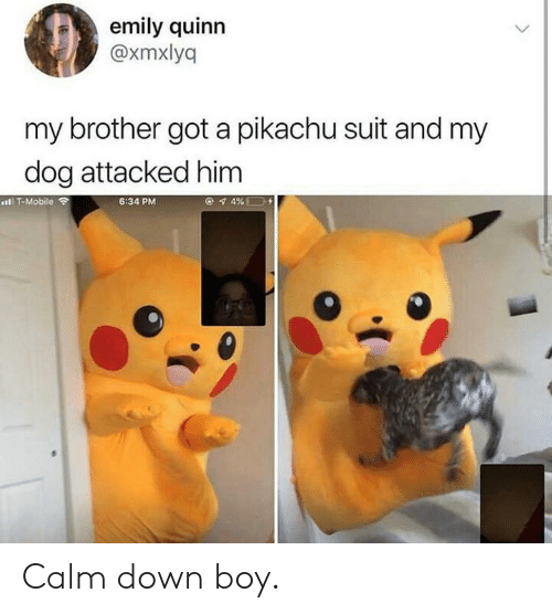Pikachu, Mobile, and Boy: emily quinn  @xmxlyq  my brother got a pikachu suit and my  dog attacked him  IT-Mobile  6:34 PM Calm down boy.