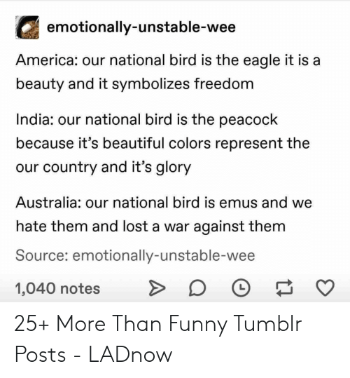 Eagle: emotionally-unstable-wee  America: our national bird is the eagle it is a  beauty and it symbolizes freedom  India: our national bird is the peacock  because it's beautiful colors represent the  our country and it's glory  Australia: our national bird is emus and we  hate them and lost a war against them  Source: emotionally-unstable-wee  1,040 notes 25+ More Than Funny Tumblr Posts - LADnow