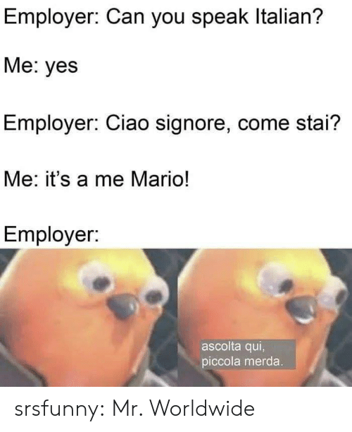 Tumblr, Mario, and Blog: Employer: Can you speak Italian?  Me: yes  Employer: Ciao signore, come stai?  Me: it's a me Mario!  Employer:  ascolta qui,  piccola merda. srsfunny:  Mr. Worldwide