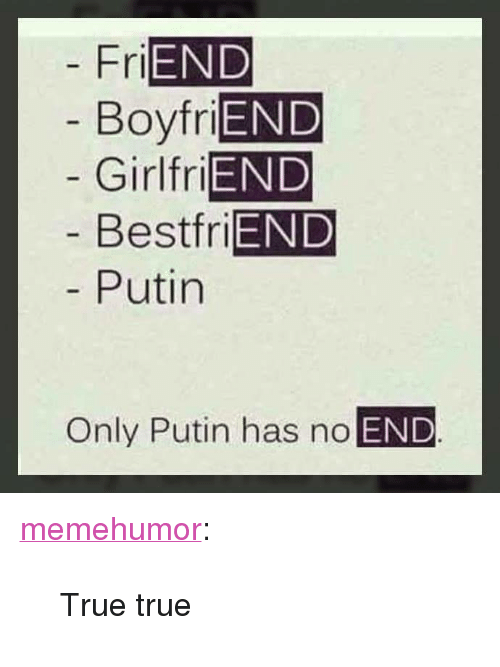 "True, Tumblr, and Blog: END  Boyfri  Girlfri  Bestfri  Putin  Fri  END  END  END  Only Putin has no END <p><a href=""http://memehumor.net/post/173465349562/true-true"" class=""tumblr_blog"">memehumor</a>:</p>  <blockquote><p>True true</p></blockquote>"