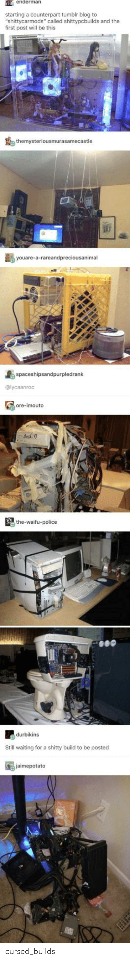 """Police, Tumblr, and Blog: enderman  starting a counterpart tumblr blog to  """"shittycarmods"""" called shittypcbuilds and the  first post will be this  themysteriousmurasamecastle  youare-a-rareandpreciousanimal  spaceshipsandpurpledrank  @lycaanroc  ore-imouto  the-waifu-police  durbikins  Still waiting for a shitty build to be posted  jaimepotato cursed_builds"""