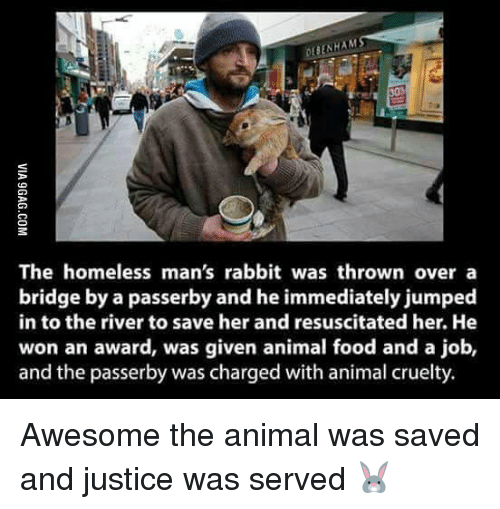 resuscitation: ENHAM  The homeless man's rabbit was thrown over a  bridge by a passerby and he immediately jumped  in to the river to save her and resuscitated her. He  won an award, was given animal food and a job,  and the passerby was charged with animal cruelty. Awesome the animal was saved and justice was served 🐰