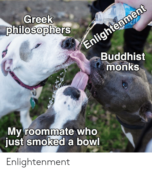 Roommate, Greek, and Bowl: Enlightenment  Buddhist  monks  Greek  philosophers  My roommate who  just smoked a bowl Enlightenment