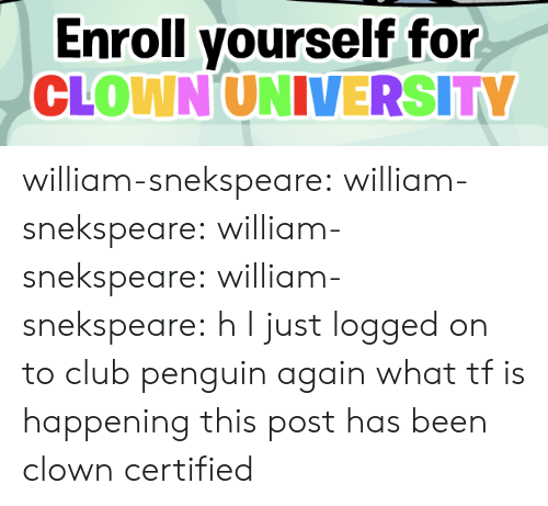 Club, Tumblr, and Blog: Enroll yourself for  CLOWN UNIVERSITY william-snekspeare: william-snekspeare:  william-snekspeare:  william-snekspeare: h I just logged on to club penguin again what tf is happening   this post has been clown certified
