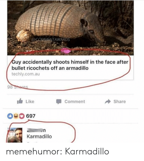 Target, Tumblr, and Blog: ENTAWARDS  uy accidentally shoots himself in the face after  bullet ricochets off an armadillo  techly.com.au  Like  Comment  Share  69  Karmadillo memehumor: Karmadillo