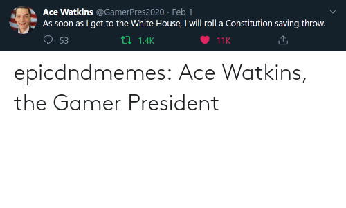 president: epicdndmemes:  Ace Watkins, the Gamer President