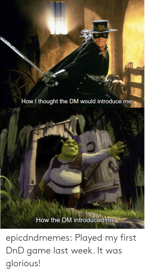 Game: epicdndmemes:  Played my first DnD game last week. It was glorious!