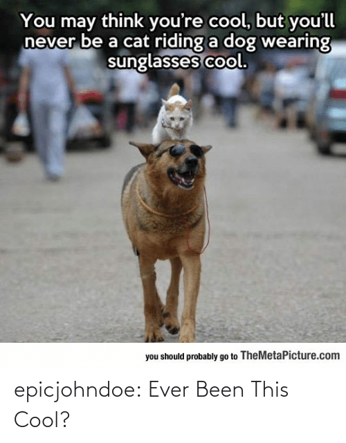 Cool: epicjohndoe:  Ever Been This Cool?