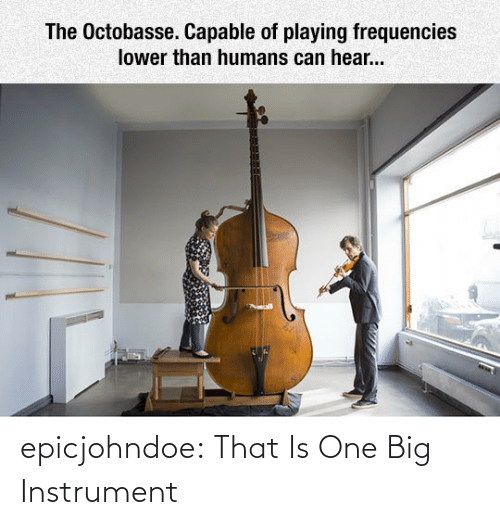 Tumblr, Blog, and Com: epicjohndoe:  That Is One Big Instrument