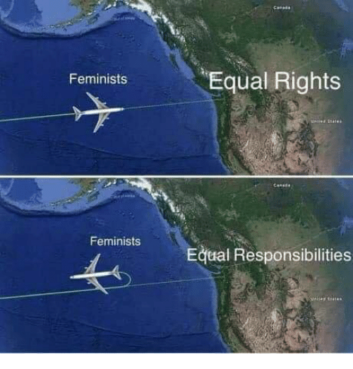 Memes, 🤖, and  Responsibilities: Equal Rights  Feminists  Feminists  Equal Responsibilities