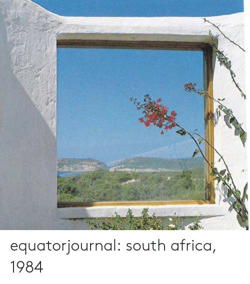Africa: equatorjournal: south africa, 1984