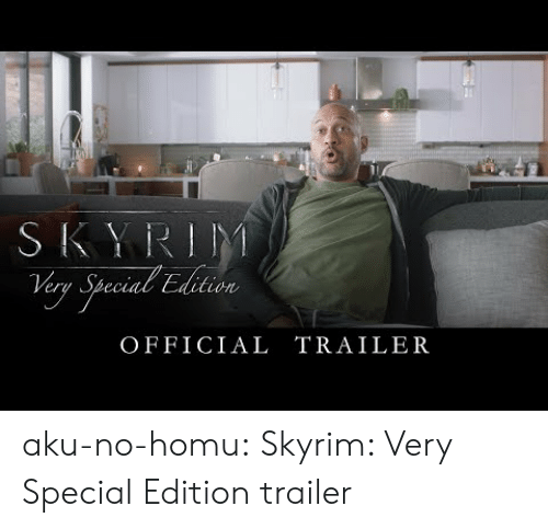Skyrim, Tumblr, and Blog: er  ec  OFFICIAL TRAILER aku-no-homu: Skyrim: Very Special Edition trailer