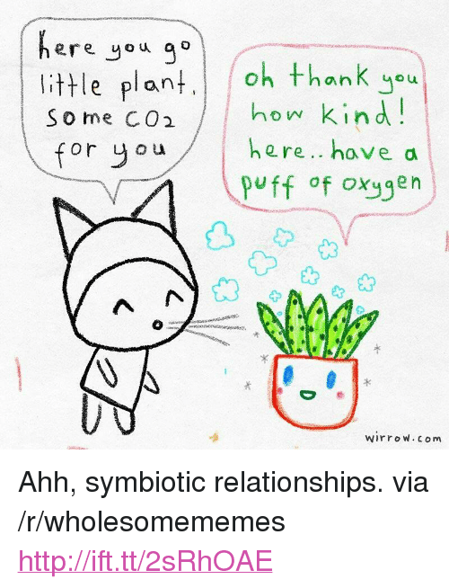 """Relationships, Thank You, and Http: ere you ao  little plant  So me CO  thank you  how kin d  here.. have a  puff of oxygen  for y ou  光  wirroW. com <p>Ahh, symbiotic relationships. via /r/wholesomememes <a href=""""http://ift.tt/2sRhOAE"""">http://ift.tt/2sRhOAE</a></p>"""