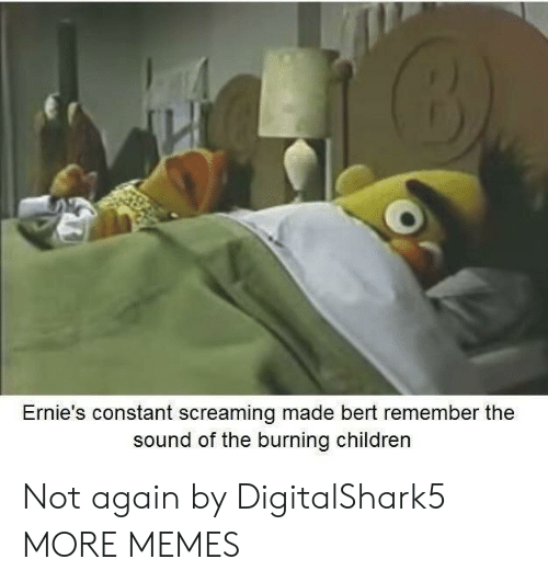 Children, Dank, and Memes: Ernie's constant screaming made bert remember the  sound of the burning children Not again by DigitalShark5 MORE MEMES