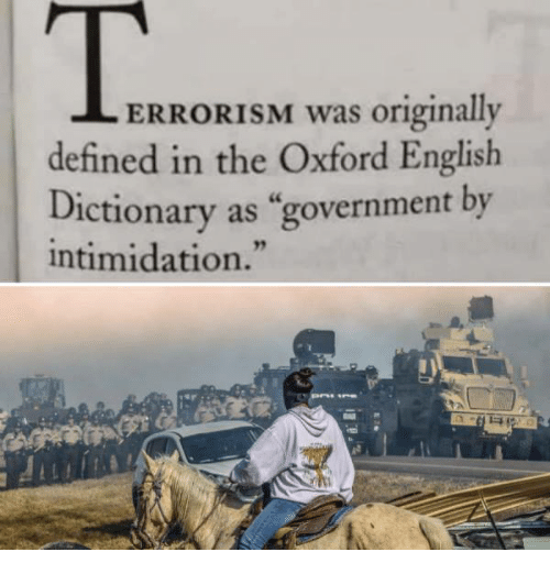 """Memes, Define, and Dictionary: ERRORISM was originally  defined in the Oxford English  Dictionary as """"government by  intimidation."""