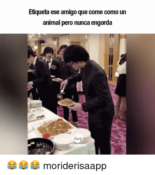Memes, Animal, and 🤖: Etiqueta ese amigo que come como un  animal pero nunca engorda  Mo 😂😂😂 moriderisaapp